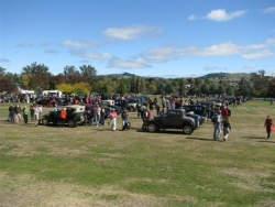 Another view of the Model A Ford's displayed at the Taupo National Model A Rally Easter 2009.JPG