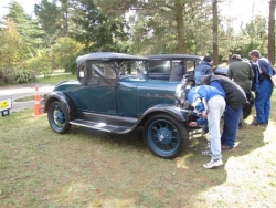 Judges pour over the Concours class cars at McLeans Island Christchurch..JPG