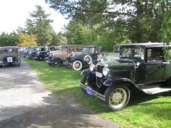 Some of the Model A Fords on display at McLeans Island Christchurch..JPG