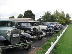 Line up of cars at the Hamilton Zoo.jpg